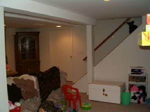 Canton Michigan Basement Remodeling Basement Finishing - Bathroom remodeling canton mi